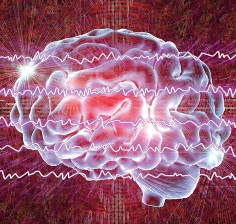 Bedeutung des irreversiblen Hirnfunktionsausfalls als sicheres Todeszeichen