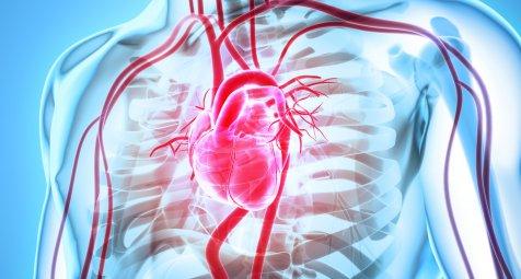 Studie-Herzinsuffizienz-und-Schlaganf-lle-nehmen-bei-jungen-M-nnern-zu
