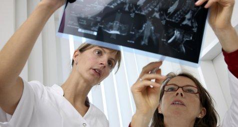 Ärztekammer Bremen beschließt neue Weiterbildungsordnung