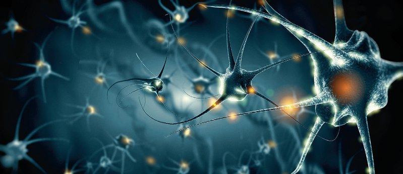Eine Stimulation der Nervenzellen im Anfallsareal soll deren Reaktion verlangsamen und die Wahrscheinlichkeit für Anfälle verringern. Foto: Giovanni Cancemi/stock.adobe.com