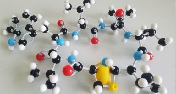 Strukturmodell von Lugdunin: der Thiazolidinring ist mit gelbem Papier hinterlegt. /Universität Tübingen, José M. Beltrán-Beleña