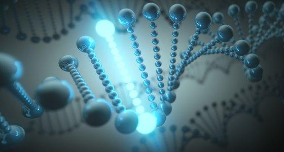 DNA-Doppelhelix mit einem aufleuchtendem Basenpaar. /ktsdesign adobe.stock.com