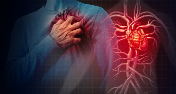 Mann fasst sich an die Brust, daneben ist ein anatomisches Herz abgebildet. / freshidea, AdobeStock.com