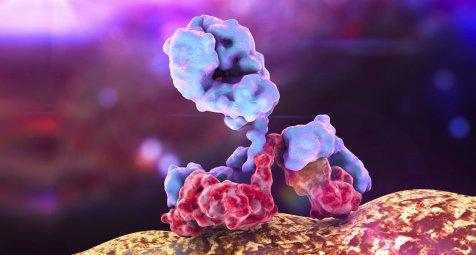 Studie: Autoantikörper können nach chronischem Stress Depressionen...