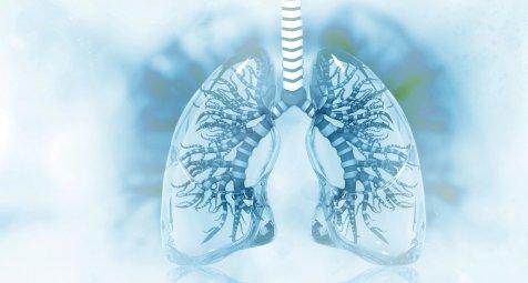 COVID-19-2-Ph-notypen-mit-Lungenversagen-haben-unterschiedliche-Mortalit-t