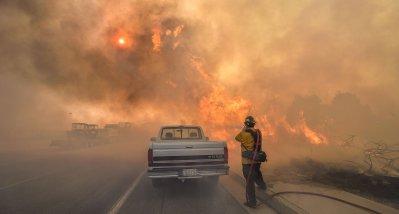 Kalifornien: Waldbrände führen zu mehr Juckreiz und mehr Ekzemen