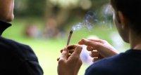 Studie: Cannabis im Jugendalter beeinflusst Hirnentwicklung