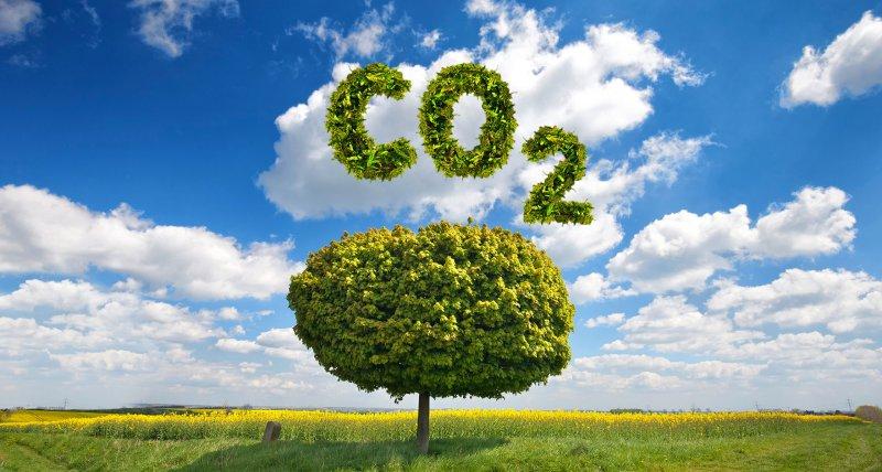 Neues Klimaschutzgesetz vom Bundestag beschlossen