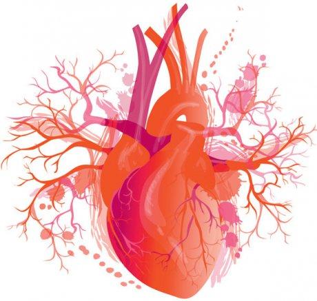 Versorgung von Menschen mit Herzerkrankungen