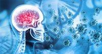 Long COVID: Gedächtnisstörungen können viele Monate anhalten