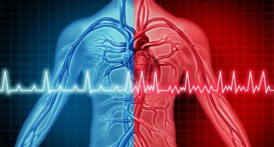 """Vorhofflimmern: Was nutzen Loop-Recorder und """"Daumen-EKG"""" in der Schlaganfallprävention?"""