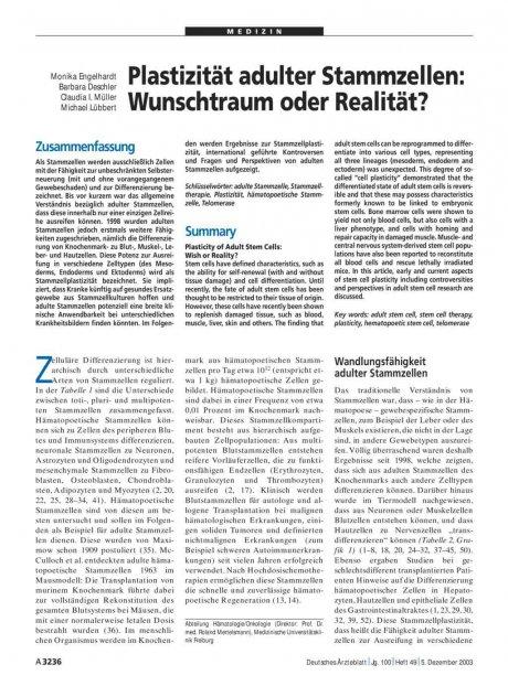 Plastizität adulter Stammzellen: Wunschtraum oder Realität?