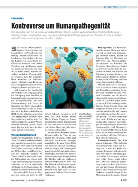 Bornavirus: Kontroverse um Humanpathogenität