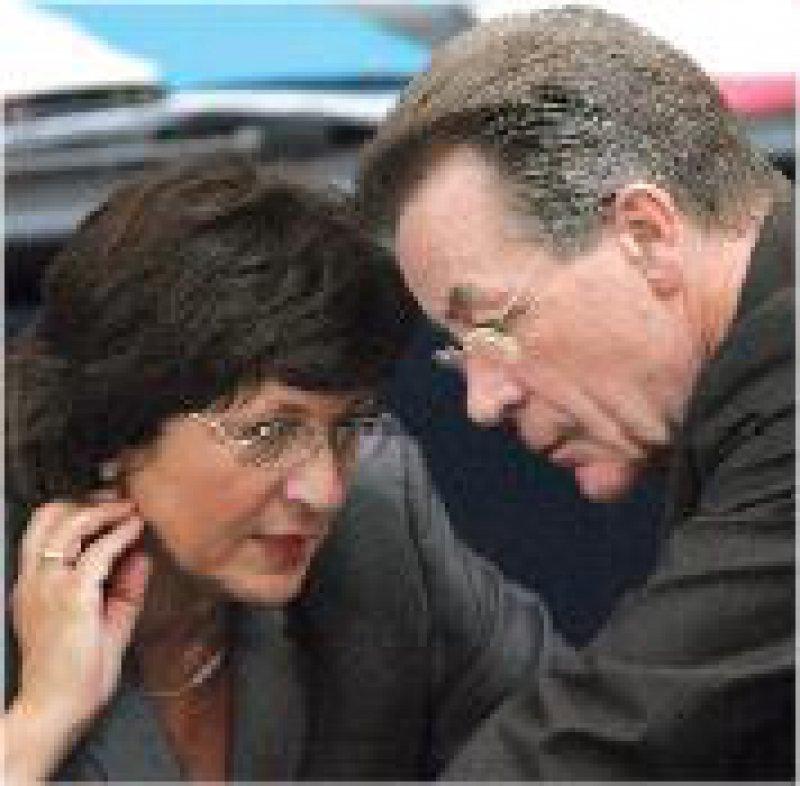Bei der Haushaltsdebatte musste Ministerin Schmidt einige Kritik einstecken. Foto: picture-alliance