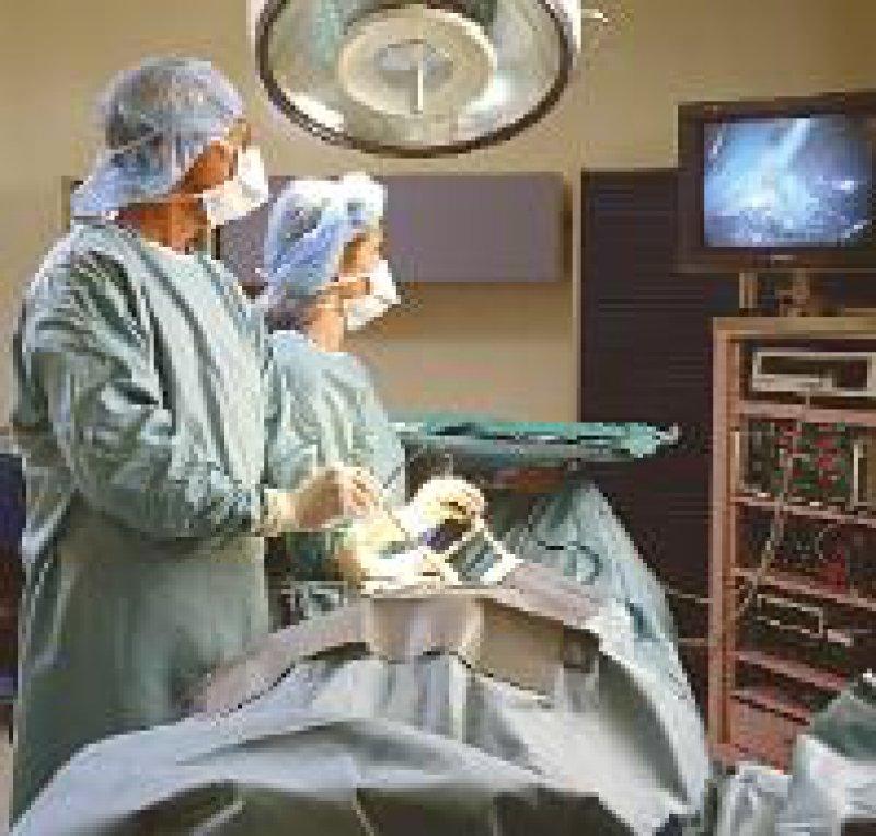 Operationen an der Gallenblase zählen zu den zehn häufigsten Eingriffen im Krankenhaus. Foto: picture-alliance/OKAPIA KG