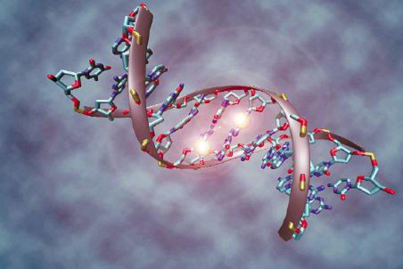Ein methyliertes DNA-Molekül. Fehlerhafte Methylierungen im menschlichen Erbgut können Krebs verursachen. Abbildung: Christoph Bock 2006