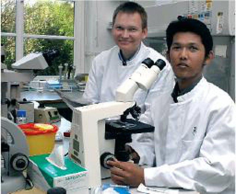 Lernen für die Heimat: Ichsan Ichsan (rechts) im Labor mit dem Göttinger Mikrobiologen Prof. Dr. med. Uwe Groß. Fotos: pid