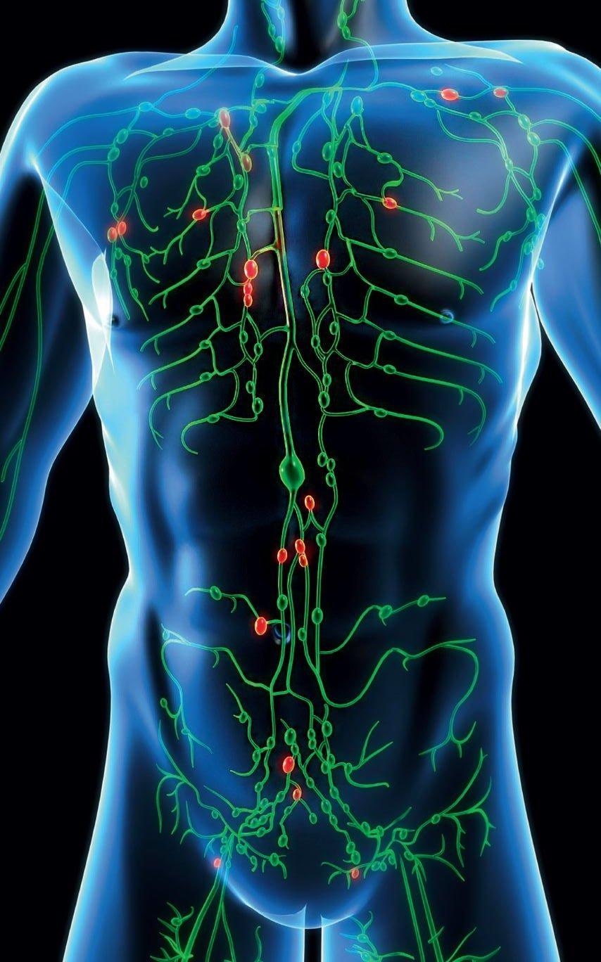 Schambein geschwollen lymphknoten Schambeinentzündung: Ursachen
