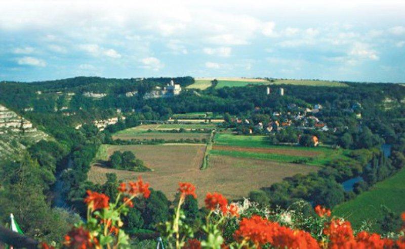 Von den Hängen aus schweift der Blick weit über die Saaleschleife und Burgen. Foto: Renate V. Scheiper