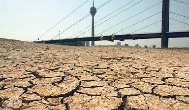 Bei der Hitzewelle 2003 starben in Deutschland rund 7 000 Menschen. Foto: ddp