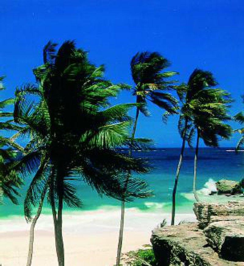 Bottom Bay, weiße feinsandige Bucht an der Südostküste von Barbados Fotos: Staatliches Fremdenverkehrsamt Barbados