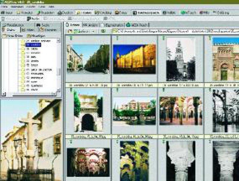 Abbildung: Fotoverwaltung mit ACD See