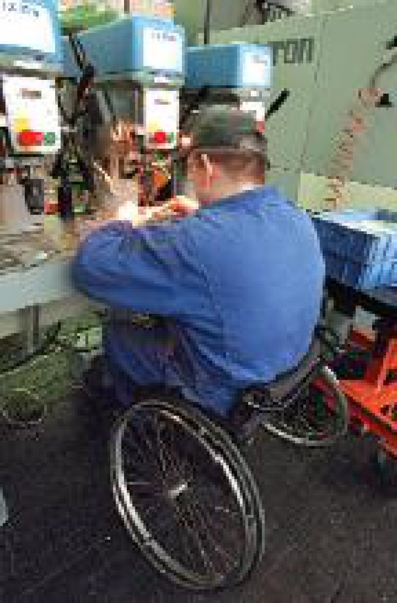 In den letzten zwei Jahren sank die Zahl arbeitsloser Schwerbehinderter um rund 45 000. Foto: dpa