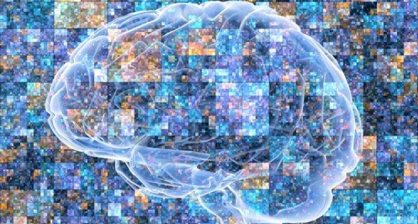 Alzheimer Doppelarmiger Antikorper Uberwindet Blut Hirn Schranke