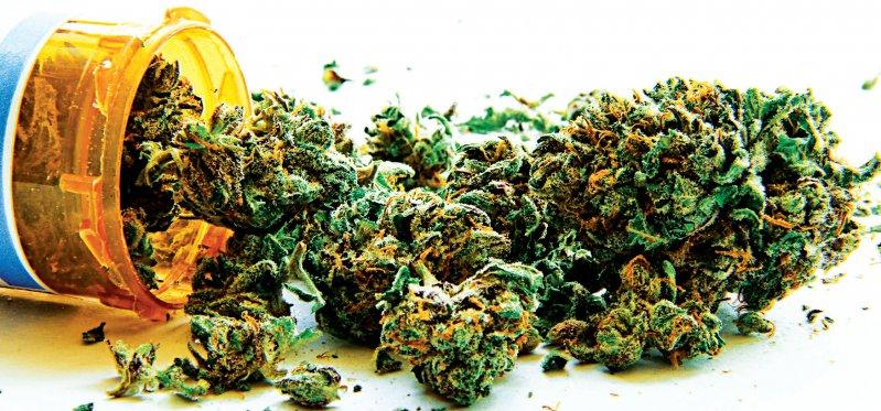 Beim Gebrauch von Cannabisblüten ist keine genaue Dosierung der medizinisch wirksamen Komponenten möglich. Foto: Fotolia/Atomazul