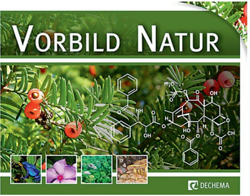 Substanzen aus dem Regenwald, Boden und Meer können zu Medikamenten werden.