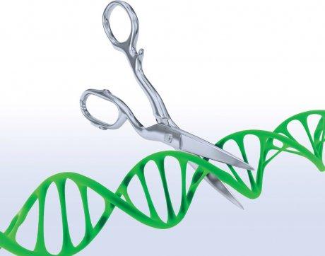 Genomchirurgie
