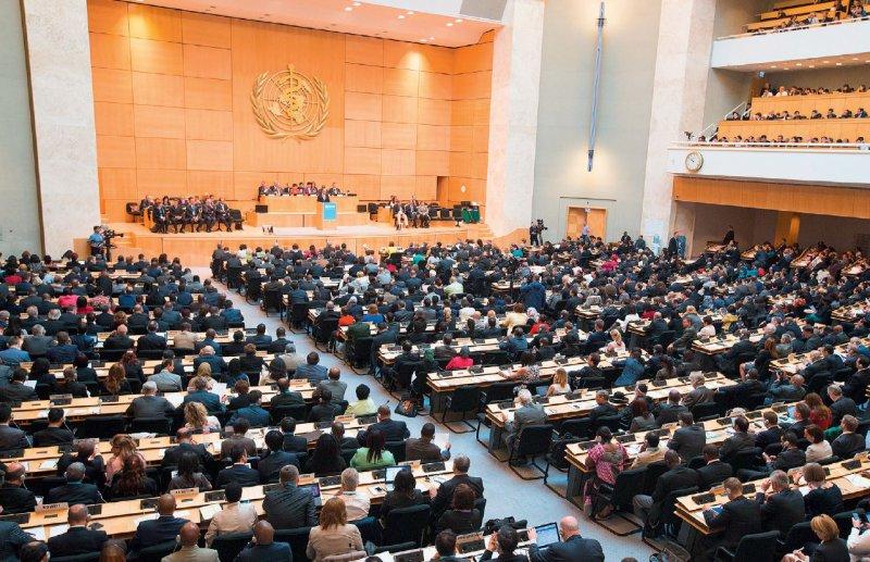 Hauptentscheidungsgremium: Vertreter der 194 WHO-Mitgliedstaaten kamen im Mai dieses Jahres in Genf zur 69. Weltgesundheitsversammlung zusammen. Foto: picture alliance