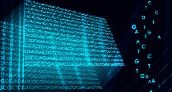 DNA-Sequenzierung ist die Bestimmung der Nukleotid-Abfolge in einem DNA-Molekül. / avarooa stock.adobe.com