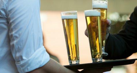 Starker Alkoholkonsum verlangsamt Gehirnwachstum bei Affen