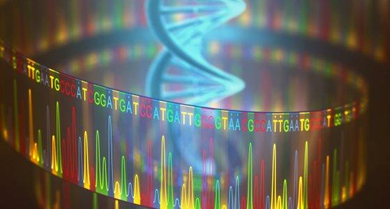 DNA mit Sequenz /ktsdesign, stock.adobe.com