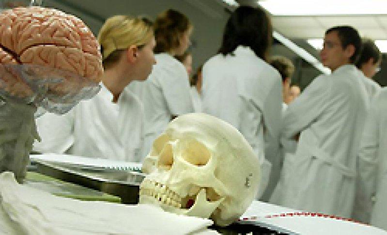 Forum: Anatomie ja, Präpkurs jein